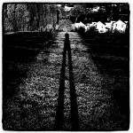 Film noir Shadow