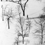 WASHINGTON SQUARE, NEW YORK, 1954